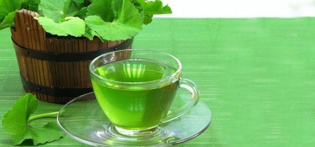 Gotu Kola is believed to help improve physical and mental wellness